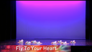 Fly To Your Heart